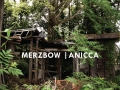Merzbow Album Cover