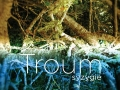 Troum album cover