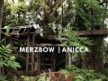 Merzbow Album Cover