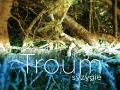 Troum album cover